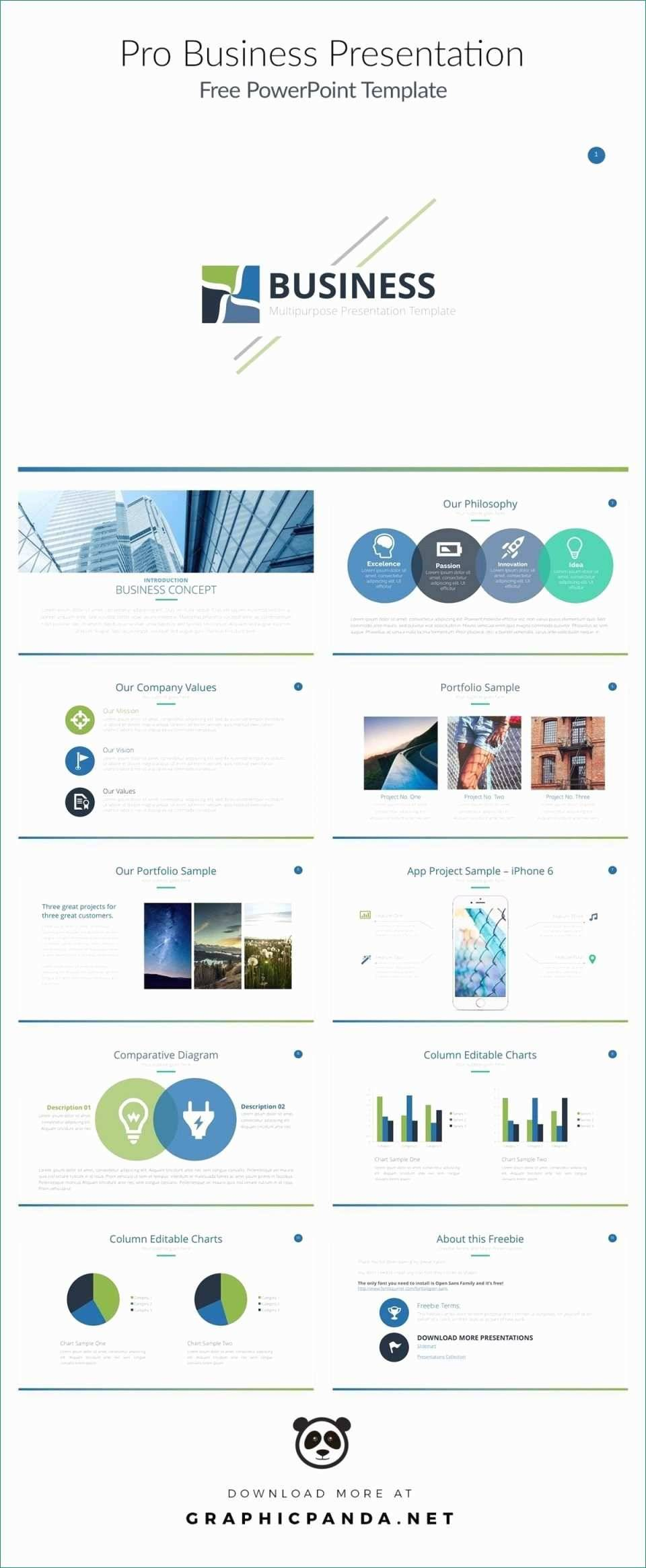 Stock Pitch Template Powerpoint