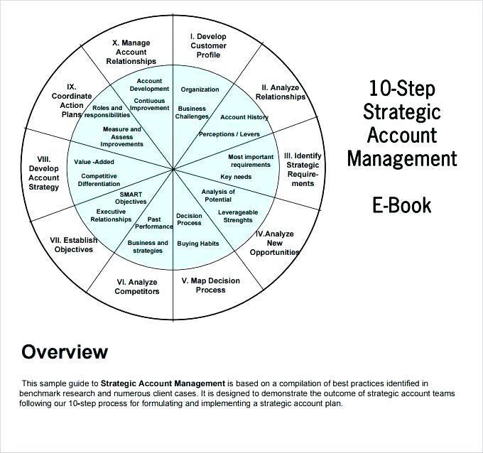 Strategic Account Management Plan Example