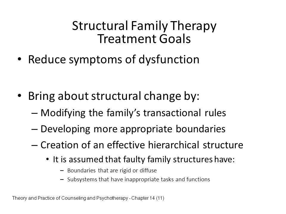 Structural Family Therapy Treatment Plan Example