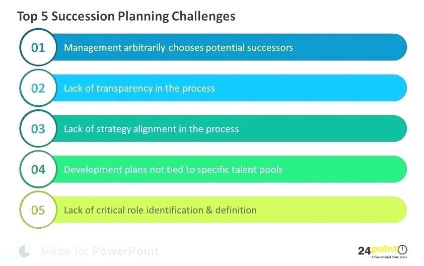 Succession Plan Format Example