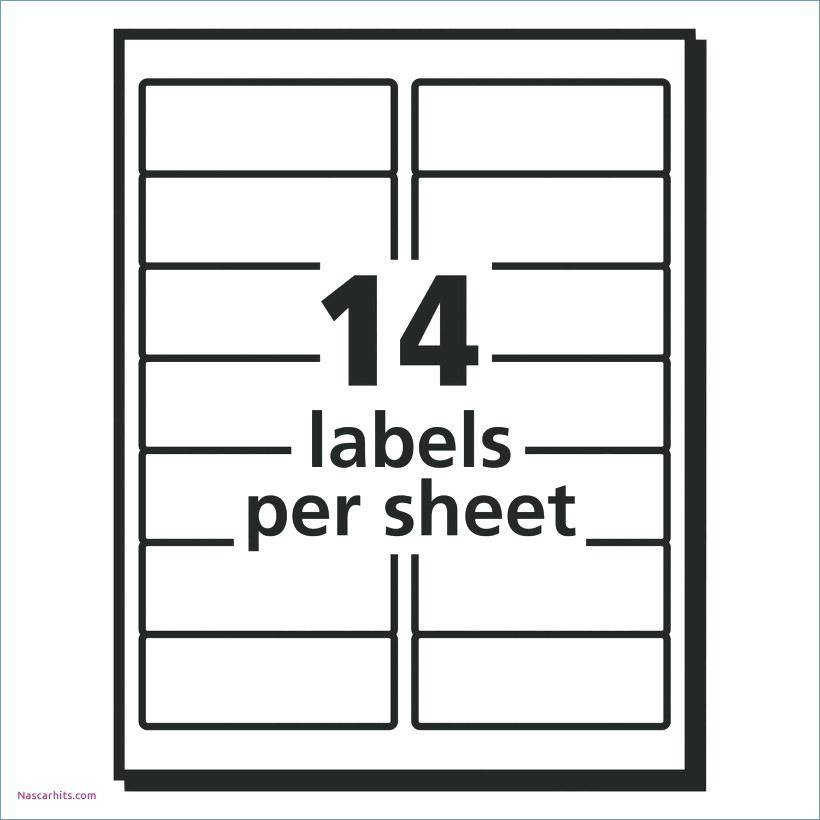 Template For Avery 8167 Return Address Labels