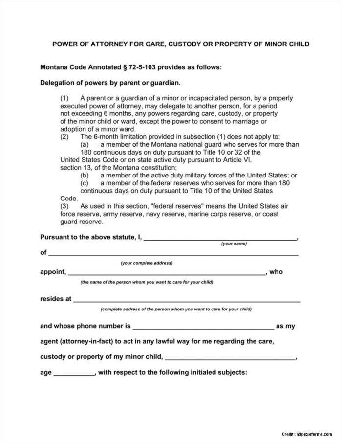 Template For Power Of Attorney For Child