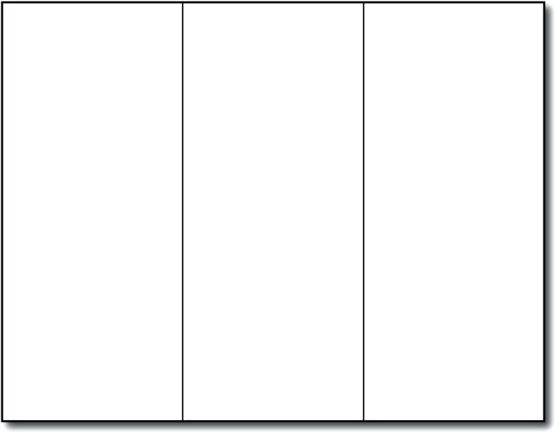 Template For Tri Fold Brochure Microsoft Word