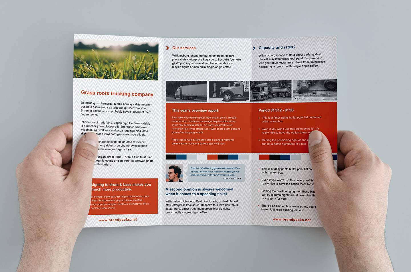 Template For Trifold Brochure Free
