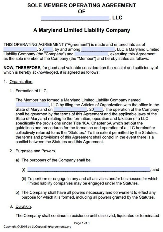 Template Single Member Llc Operating Agreement