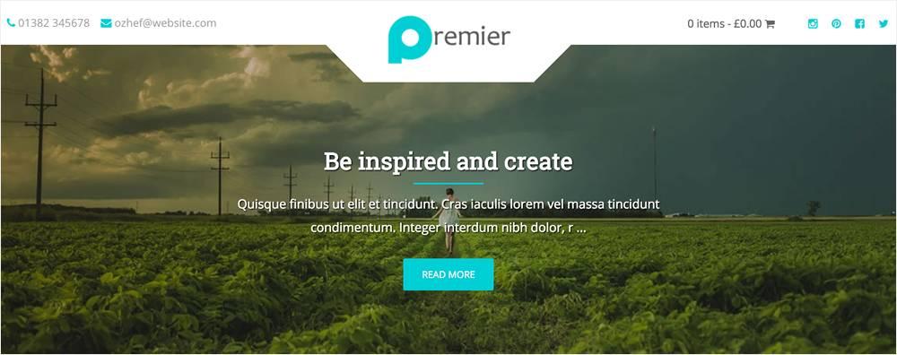 Template WordPress Responsive Free
