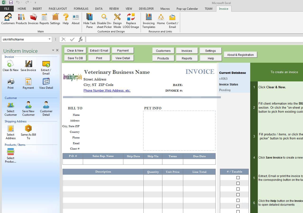 Veterinary Invoice Template