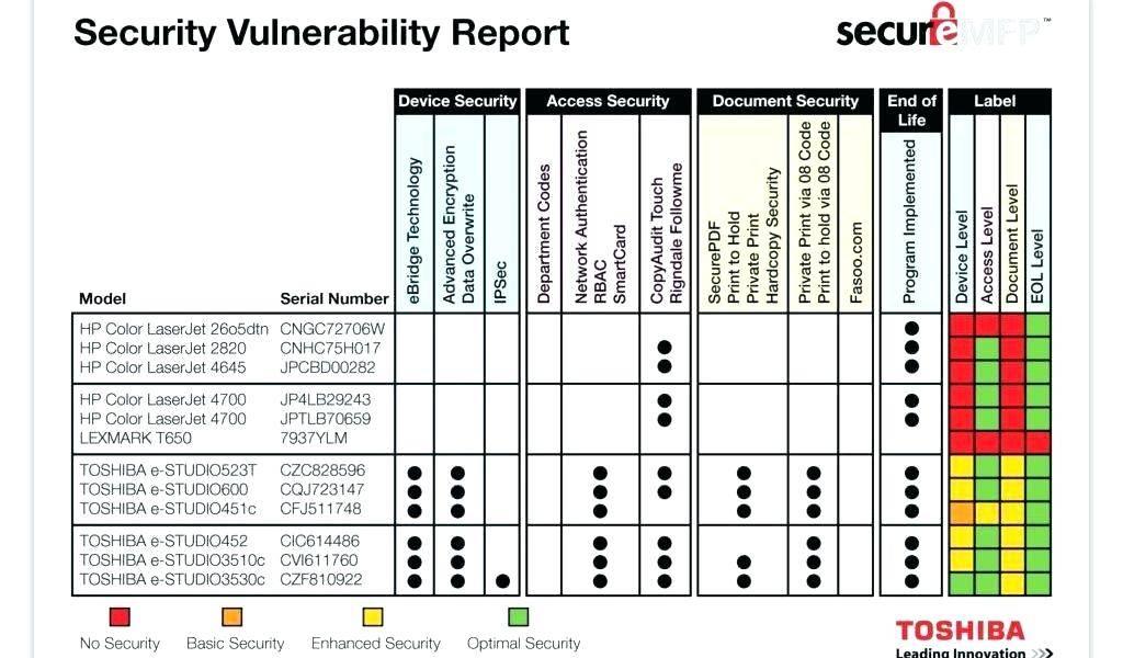 Vulnerability Assessment Matrix Template
