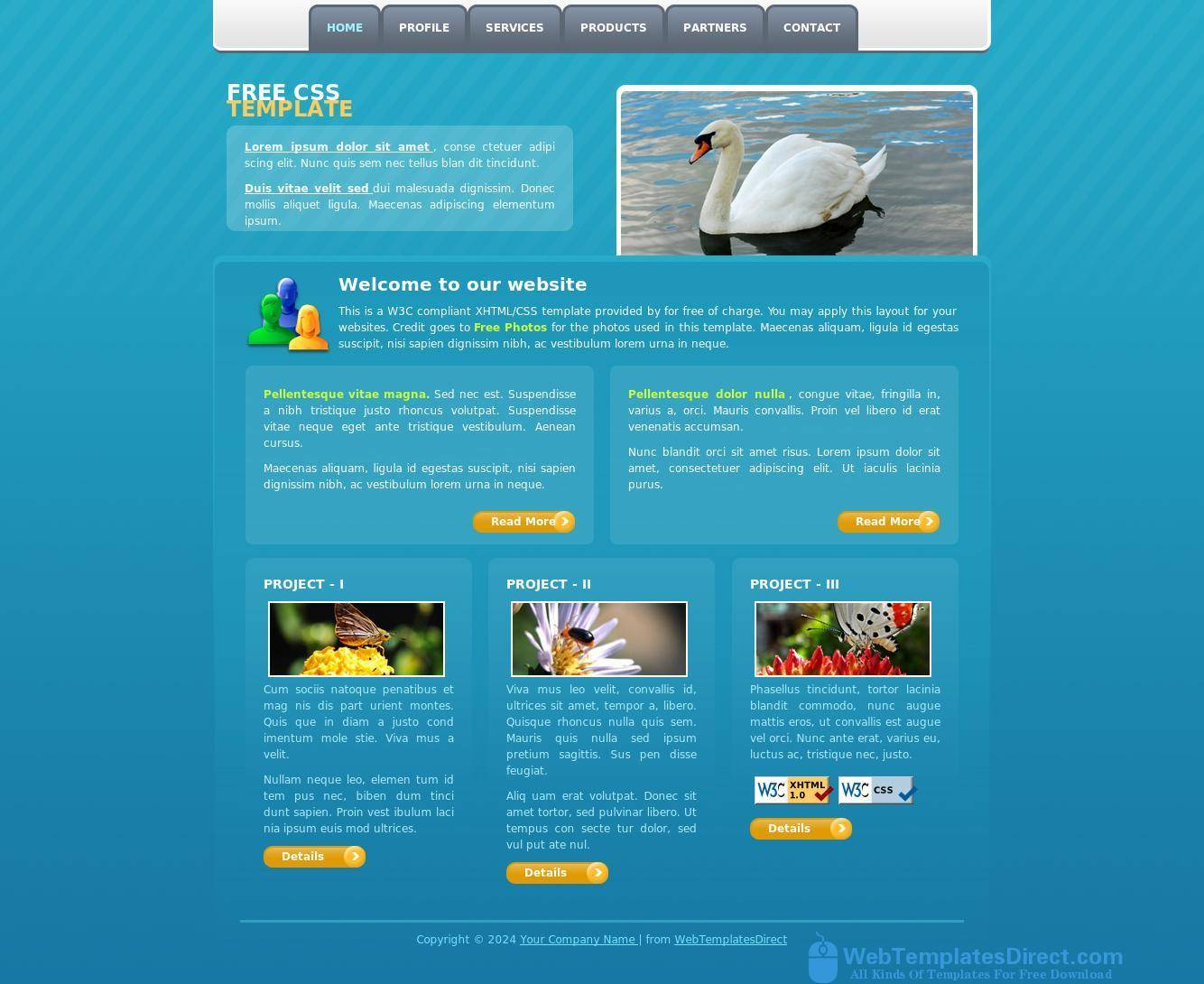 Web Page Templates Free Download Html With Css