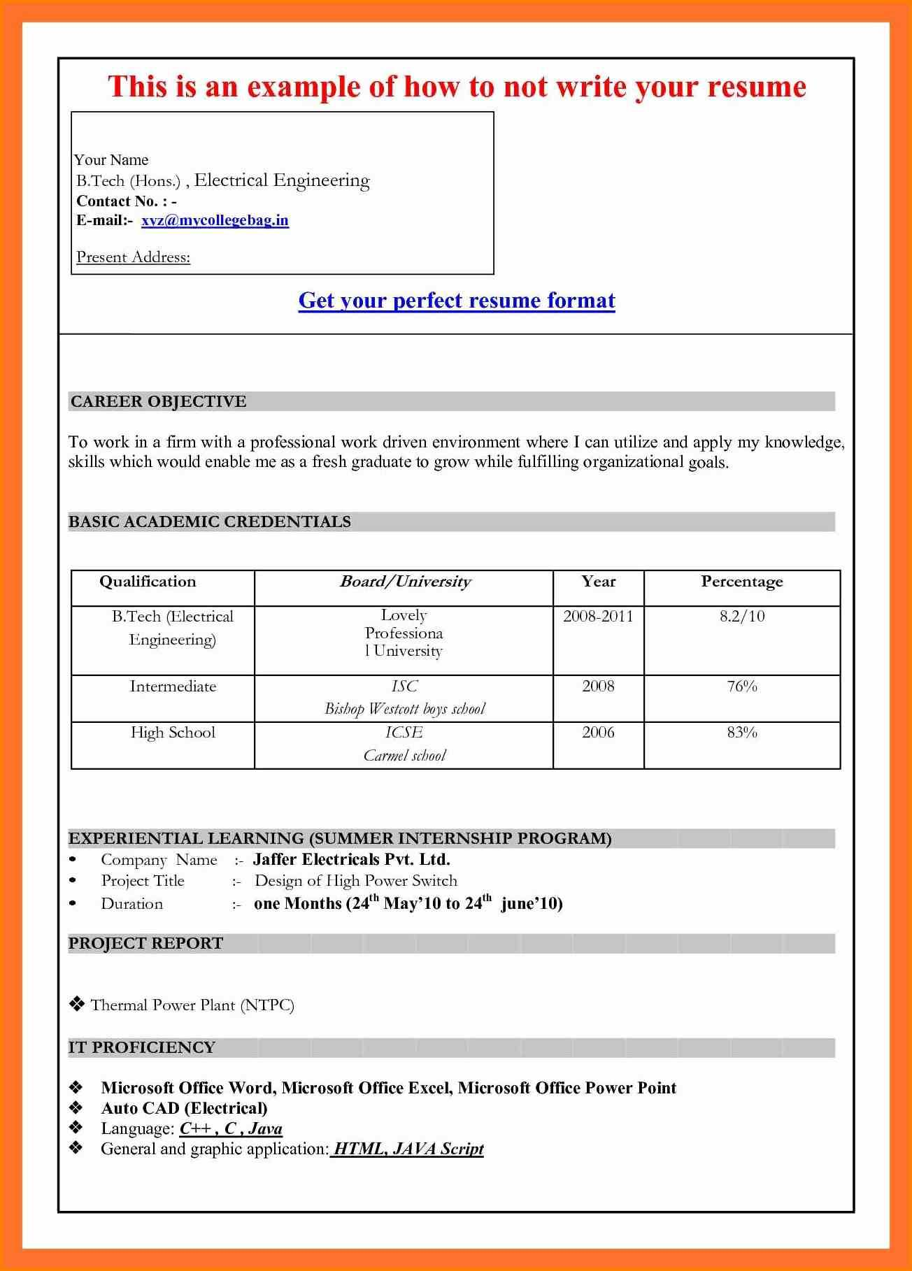 Weekly Activity Report Template Software