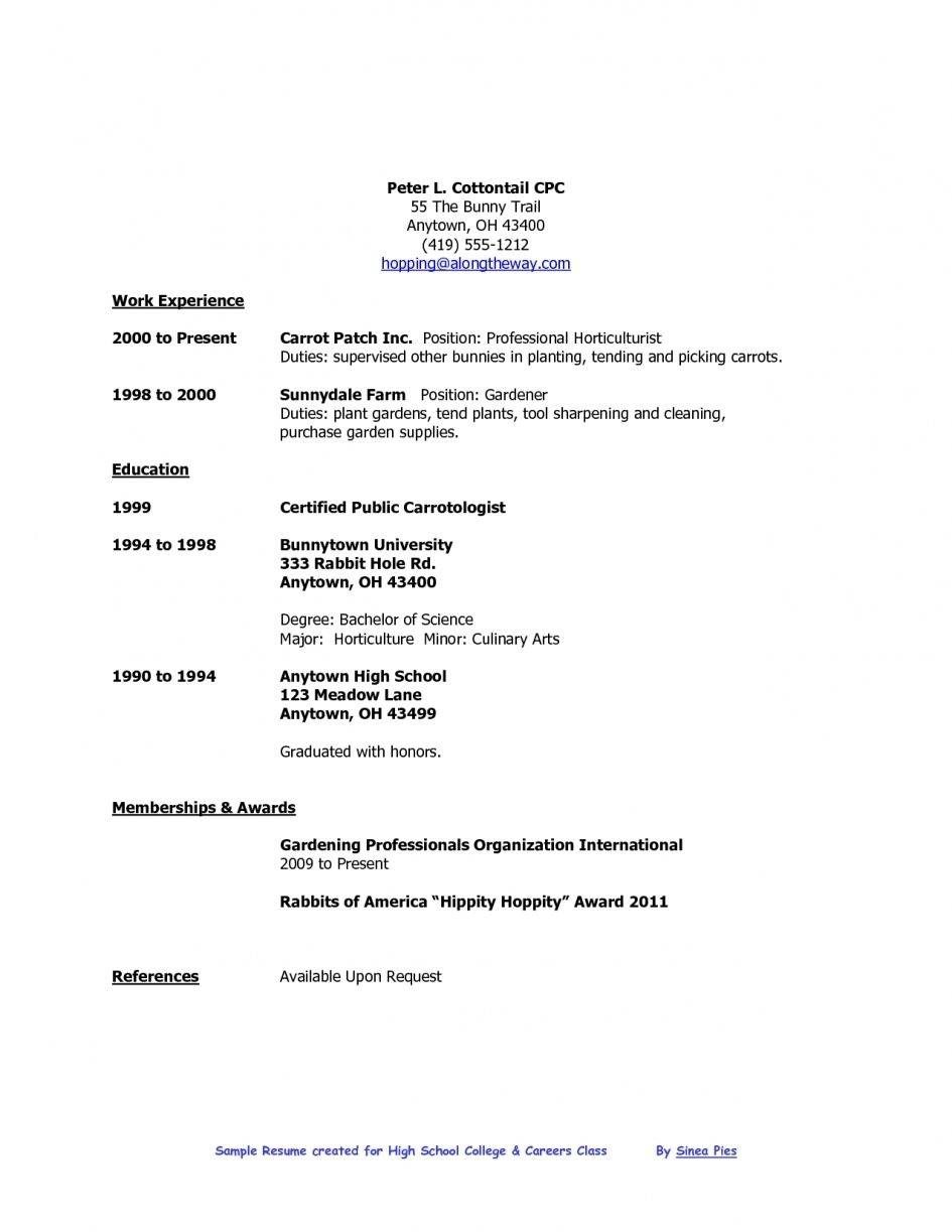 Word Document Editable Resume Templates