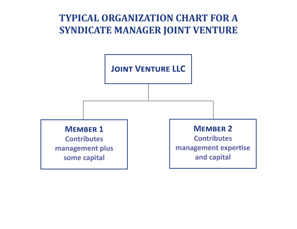 Joint Ventures & Co-Investments — Typical Structures & Applications