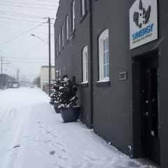 Synergy-Snowpocalypse