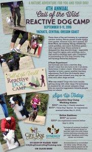 CampCalloftheWild_Reactive_2016_Poster