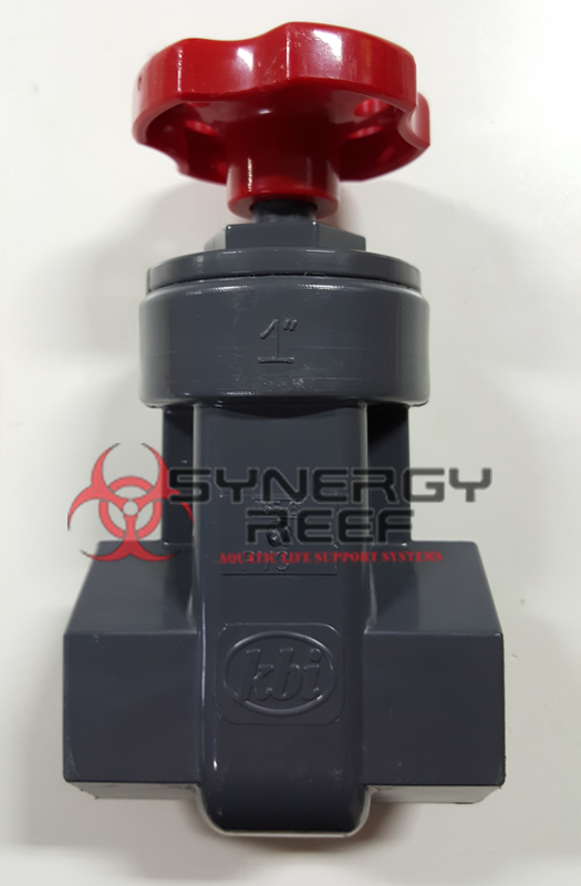 "1"" Grey Schedule 80 Gate Valve"