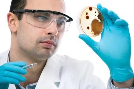 Sampling Suspect Mold