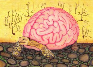 Fragile Brain Shield by AllAllucinations with  CCLicense