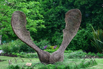 Sycamore seed, Tom Hare, 2009 © Andrew-M-Whitman with CCLicense