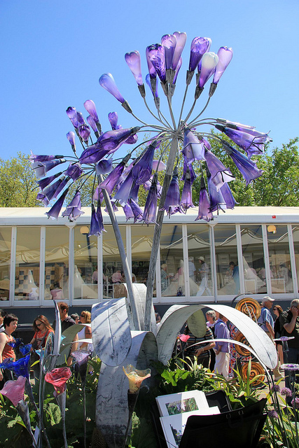 Another view of Agapanthus, which measures 4 meters tall (a little over 13 feet)