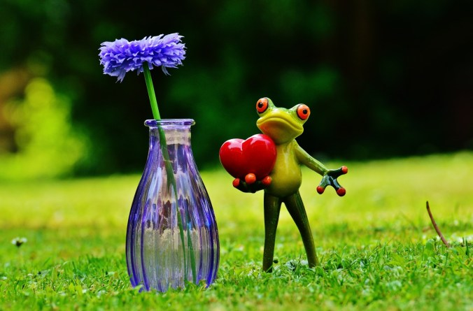 frog_love_valentine_s_day_vase_flower_glass_greeting_card_heart-620048
