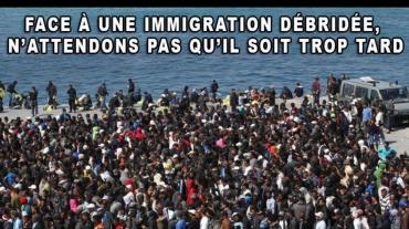 invasion-migratoire.jpg