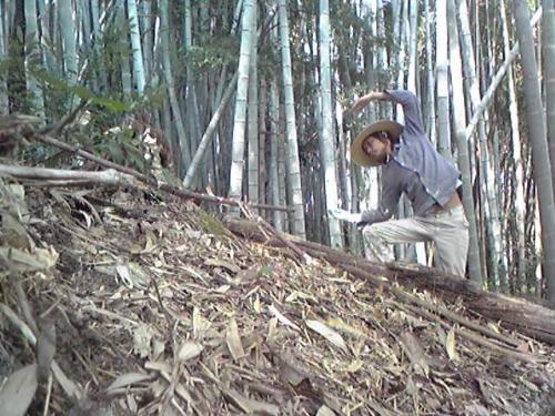 竹やぶの中でYMCAのCをやる竜一