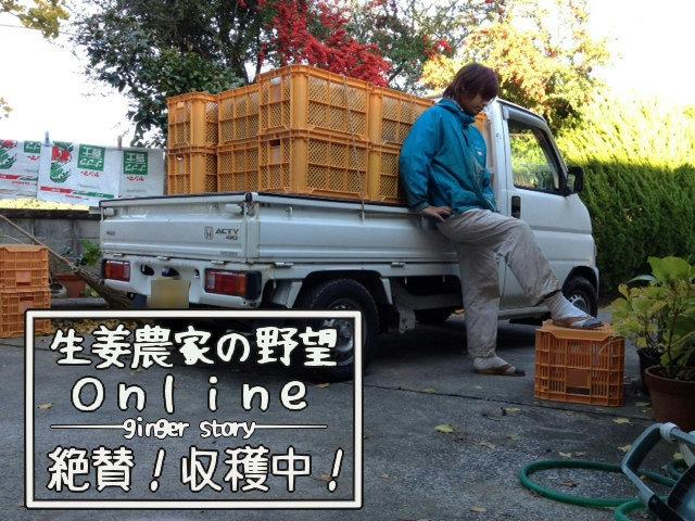 平成24年産生姜、収穫終了!