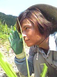 モーニング農家。