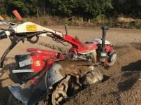 管理機で生姜畑を作る