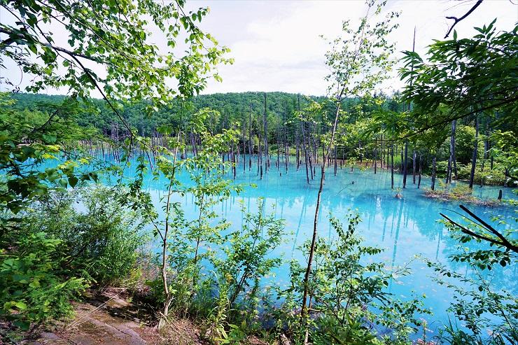 青い池南側