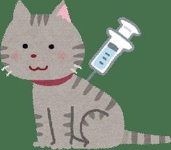 influenza-vaccine-syurui