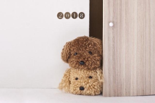 犬の腸閉塞の症状や原因・治療法【手術】や予防について