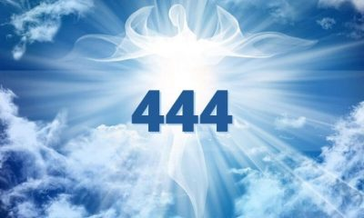 What does 444 mean