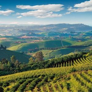 Vietti Piedmont Italy