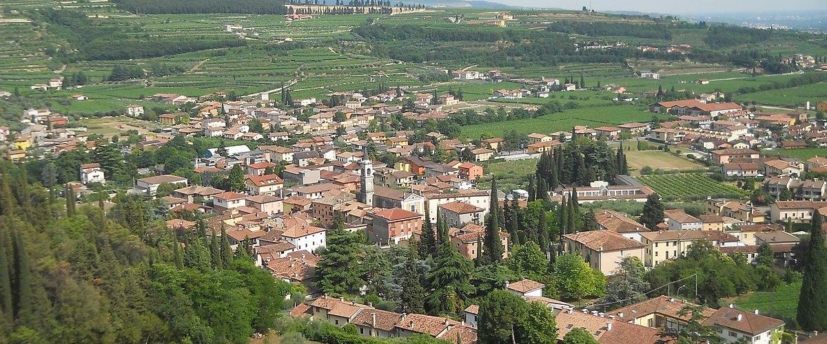 Amarone Della Valpolicella – The Bold, Seductive Wine From Veneto