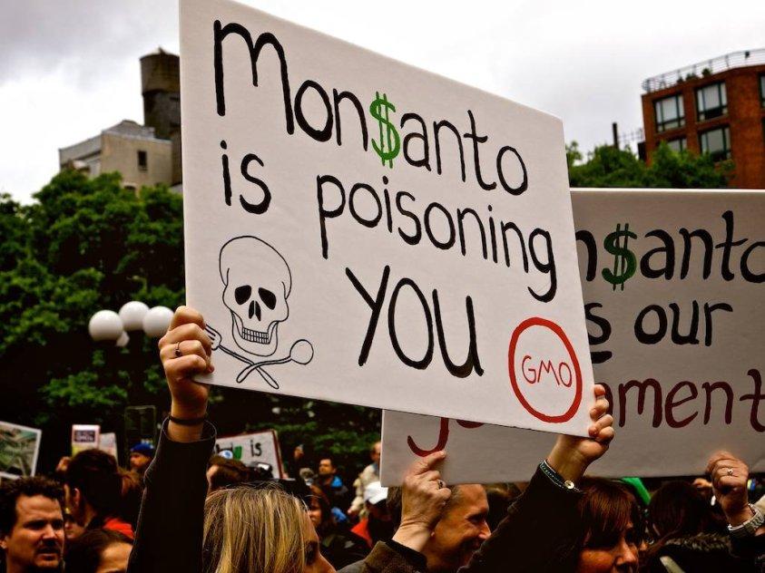 Protest against Monsanto GMO