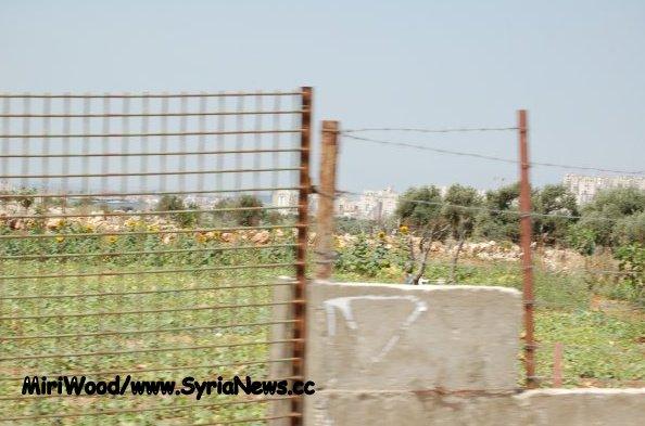 image-Modi'in from Bil'in