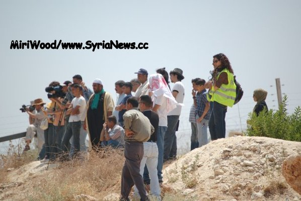 image-This boulder protected the author when the IDF indiscriminately fired shock grenades into the crowd of civilians.