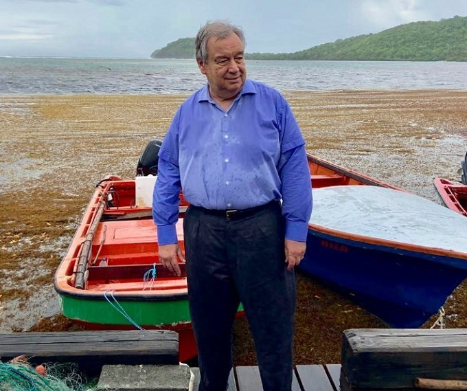 SG visited St. Lucia to discuss 'climate' & sargassum, which can be cleaned & used as fertilizer, made into kelp supplements.
