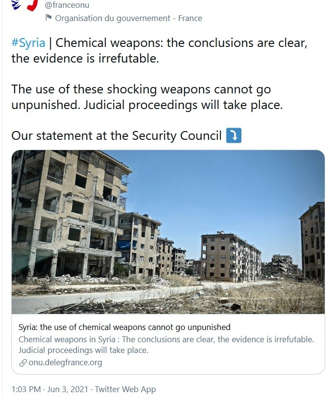 French ambassador bordered on demanding another bombing of Syria for OPCW - UN.