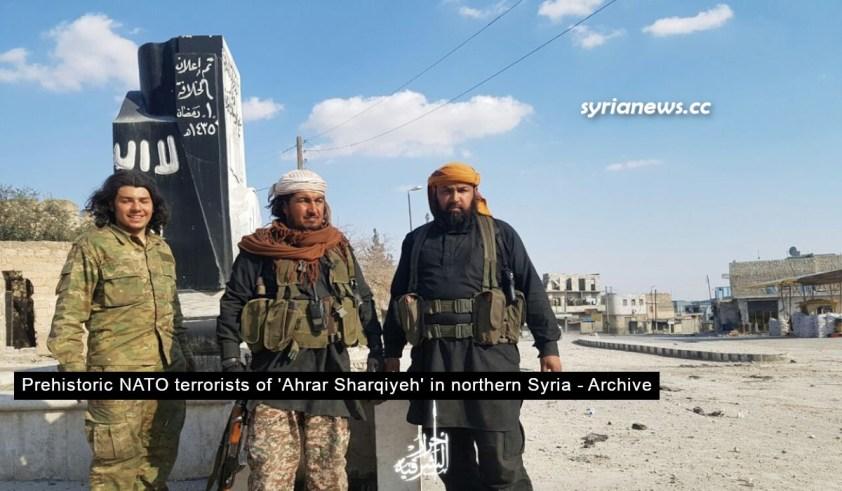 NATO terrorists in northern Syria - Afrin Aleppo Erdogan Kurds SDF USA
