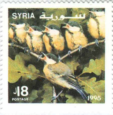 طوابع سورية 1995 - الطيور