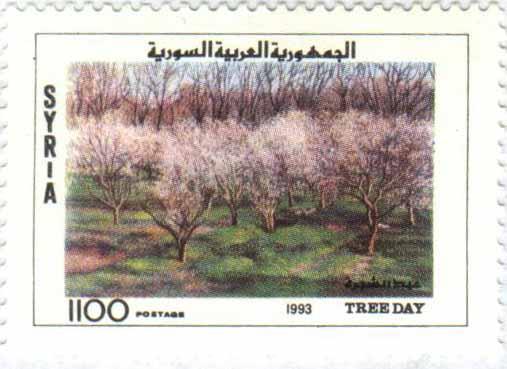 طوابع سورية 1993  - عيد الشجرة