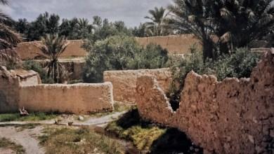 واحة تدمر – نيسان 1997