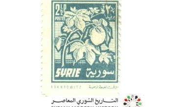 طوابع سورية 1956 - بريد عادي - القطن