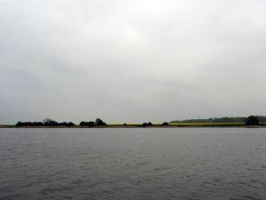 Rapsfelder am Ufer