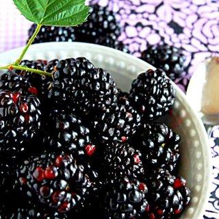 Summer Berries (Recipes: Blackberry Lavender Vinegar and Vinaigrette)