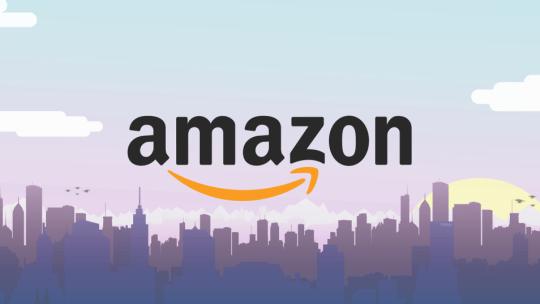 Come guadagnare seriamente da casa con Amazon