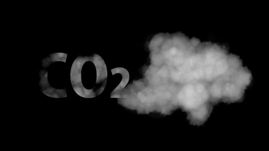 Microsoft pretende remover todo o dióxido de carbono emitido
