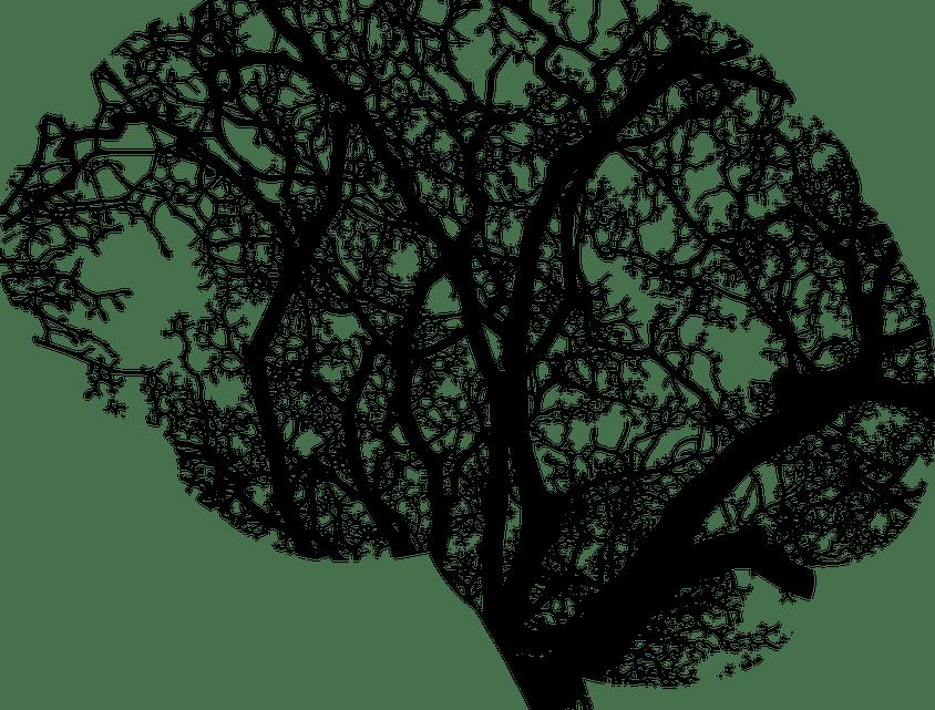 Traitement du langage naturel